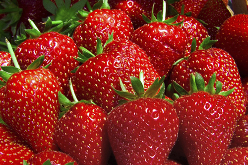 Strawberries fruit