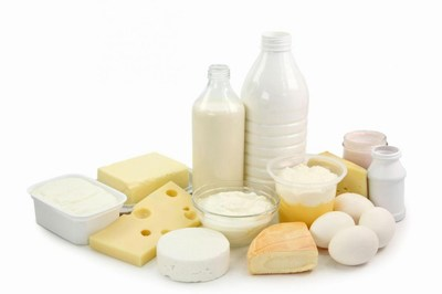 Dairy Products weight loss Protein Food