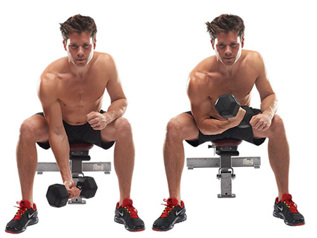 Bicep Curls Workout