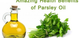 Amazing Health Benefits of Parsley Oil